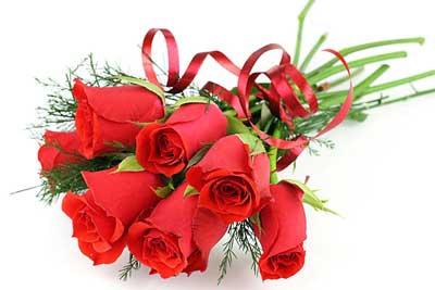 可爱天天玫瑰图片